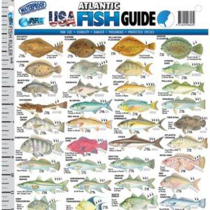 AFN Atlantic Fish Guide