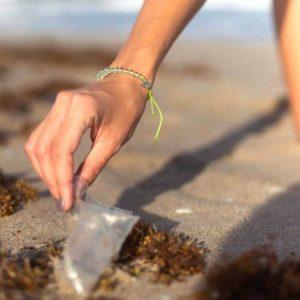 SEA TURTLE ACTIVE WEAR