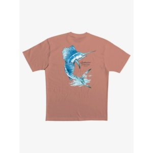 Quiksilver Leaps and Bounce T-Shirt Canyon Sunset Back